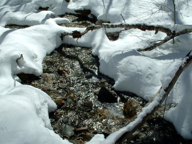 Icy Brook
