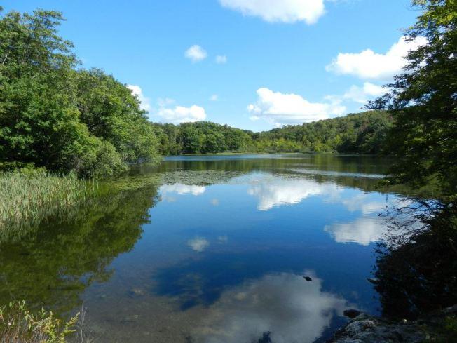 Berry Pond